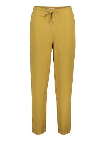 CARTOON Hose in Gelb