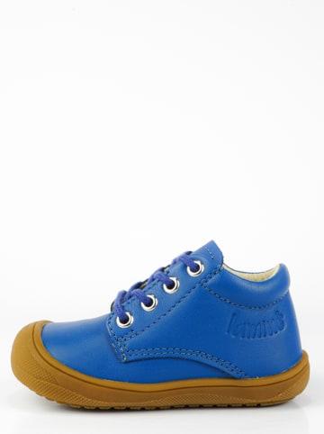 Lamino Leder-Lauflernschuhe in Blau