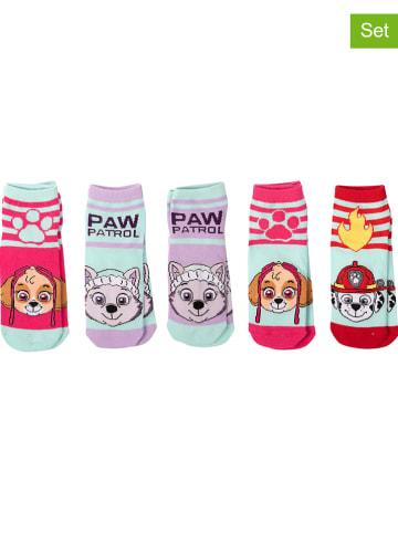 """United Labels 5-delige set: sokken """"Paw Patrol"""" meerkleurig"""