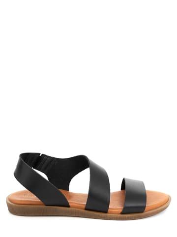 CLKA Leren sandalen zwart