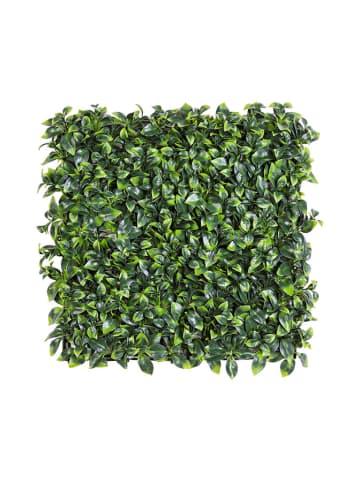 Bizzotto Dekoracja ścienna w kolorze zielonym - (D)50 x (S)50 cm