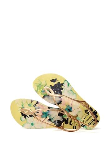 Havaianas Sandały w kolorze złoto-żółtym ze wzorem