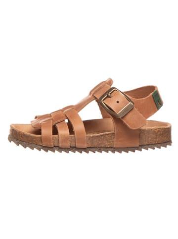 El Naturalista Skórzane sandały w kolorze karmelowym