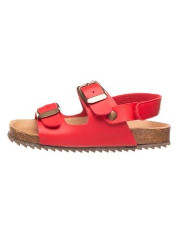 El Naturalista Sandały w kolorze czerwonym