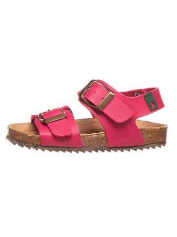El Naturalista Sandały w kolorze różowym