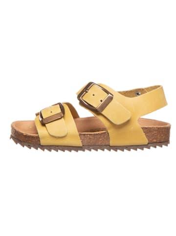 El Naturalista Skórzane sandały w kolorze żółtym