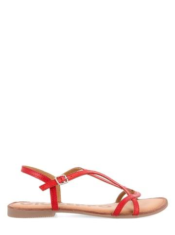 Gioseppo Leren sandalen rood
