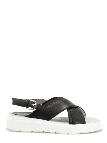 """Geox Sandały """"Tamas"""" w kolorze czarnym"""