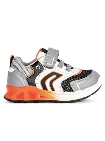 """Geox Sneakers """"Dakin"""" in Grau"""