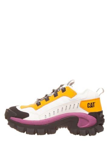 "CAT Leder-Sneakers ""Intruder"" in Weiß"