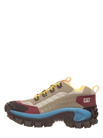 "CAT Leder-Sneakers ""Intruder"" in Beige/ Rot/ Blau"