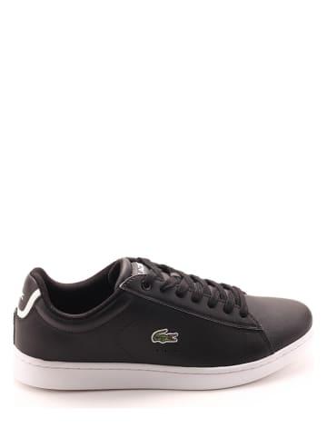 """Lacoste Skórzane sneakersy """"Carnaby Evo"""" w kolorze czarnym"""