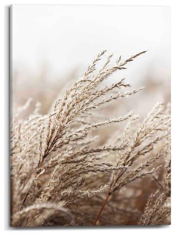"Orangewallz Leinwanddruck ""Field Grass Scandic Breeze"" - (B)50 x (H)70 cm"