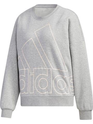 Adidas Sweatshirt in Grau