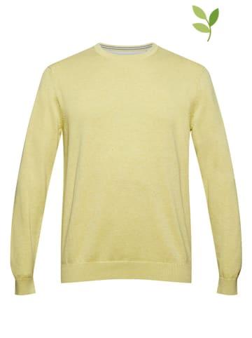 ESPRIT Pullover in Gelb