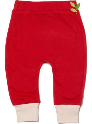 Little Green Radicals Spodnie dresowe w kolorze czerwonym