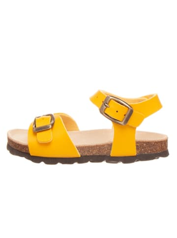 BIO PINGÜIN Sandalen geel
