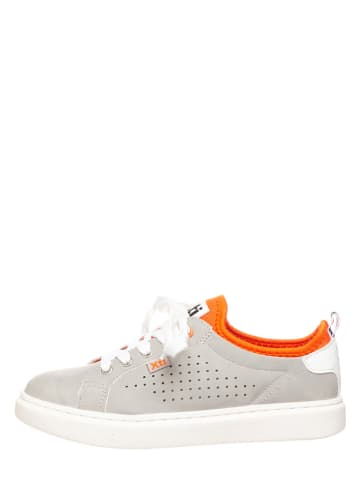 Xti Sneakers lichtgrijs