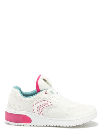 Geox Sneakers in Creme