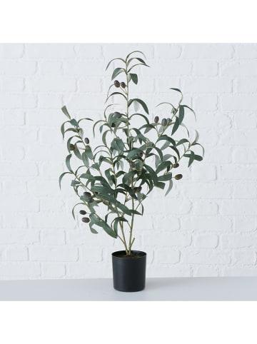 "Boltze Kunstplant ""Olijfboom"" groen - (H)70 x Ø 25 cm"