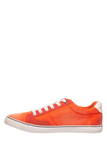 Chiemsee Sneakersy w kolorze czerwonym