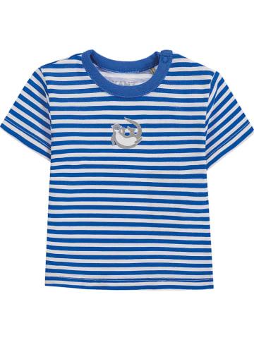 Kanz Koszulka w kolorze niebiesko-białym