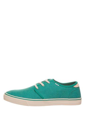 "TOMS Sneakers ""Carlo"" groen"