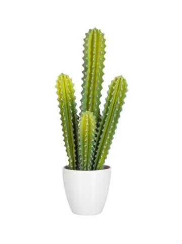 J Line Sztuczna roślina - (S)19,75 x (W)50 x (G)15 cm