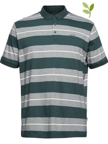ESPRIT Koszulka polo w kolorze zielono-szarym