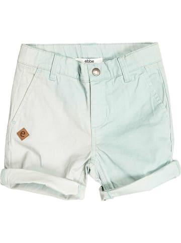 """Ebbe Shorts """"Osmond"""" in Mint"""