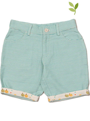 Little Green Radicals Shorts lichtblauw