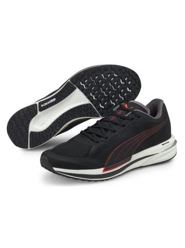 """Puma Buty """"Velocity Nitro"""" w kolorze czarnym do biegania"""