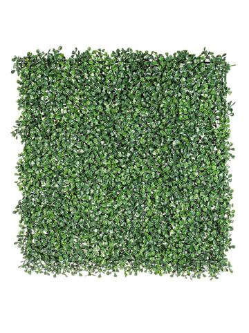 Bizzotto Wanddecoratie groen - (L)50 x (B)50 cm