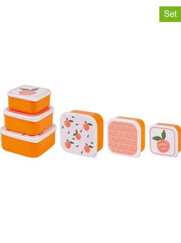 "Ladelle 3-delige set: lunchboxen ""Summer Fun - Peachy"" oranje"