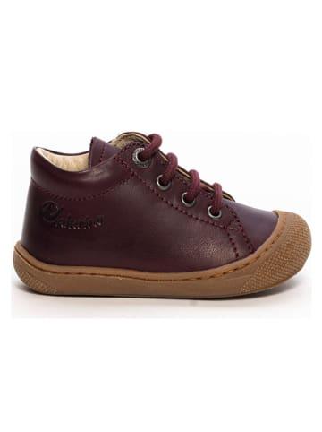 Naturino Skórzane buty w kolorze brązowym do nauki chodzenia