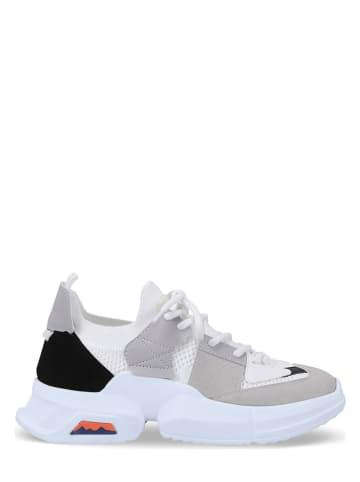 Aéropostale Sneakersy w kolorze biało-jasnoszarym