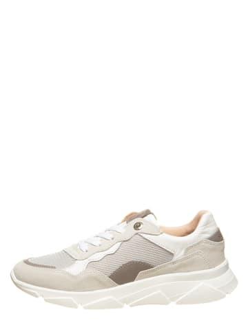 """SALAMANDER Skórzane sneakersy """"Malvi"""" w kolorze jasnoszarym"""