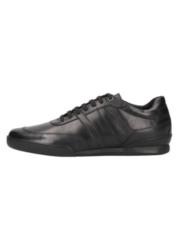 Geox Skórzane sneakersy w kolorze czarnym