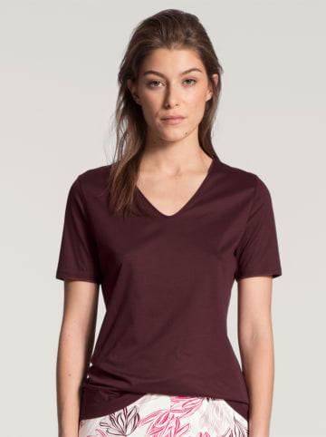 Calida Koszulka piżamowa w kolorze bordowym