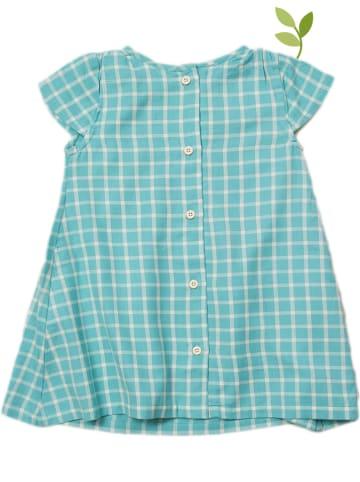 Little Green Radicals Sukienka w kolorze turkusowym
