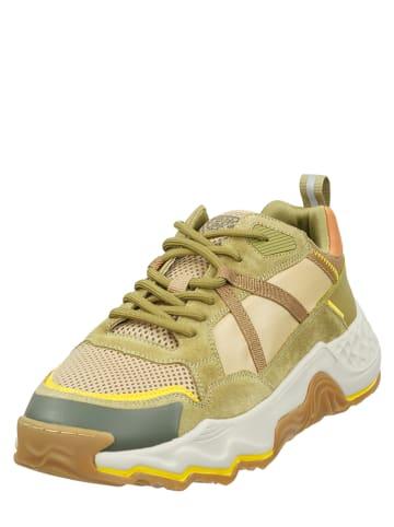 "Camel Active Sneakers ""Rove"" in Hellbraun"