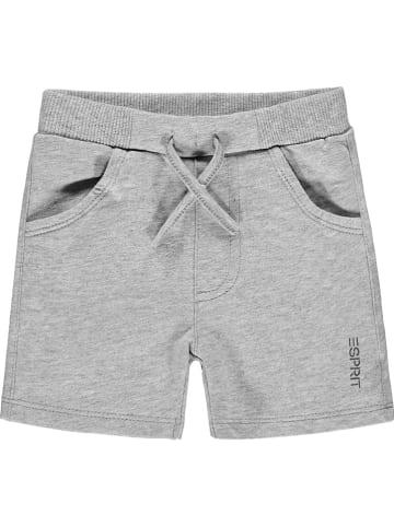 ESPRIT Sweatshorts in Grau