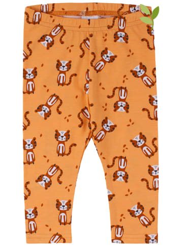 Fred´s World by GREEN COTTON Leggings in Orange
