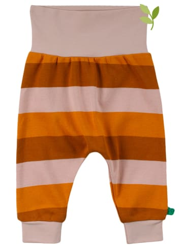 Fred´s World by GREEN COTTON Hose in Orange