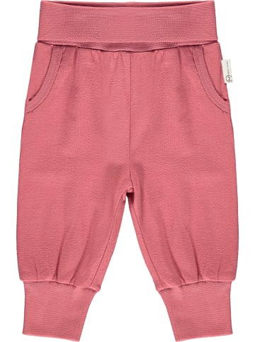 Steiff Hose in Pink