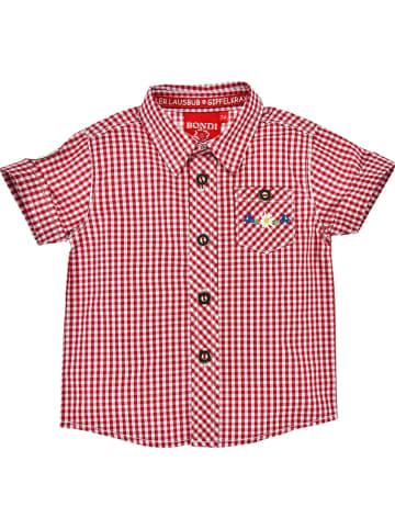 Bondi Trachtenhemd in Rot