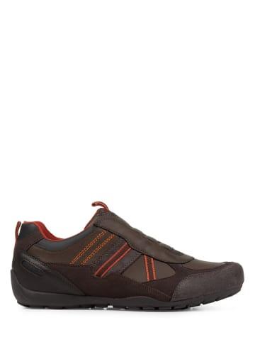 """Geox Sneakers """"Ravex"""" in Braun"""