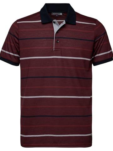 GIORGIO DI MARE Koszulka polo w kolorze bordowym