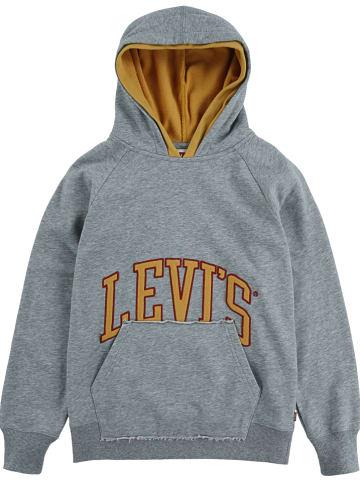 Levi's Kids Sweatshirt in Grau
