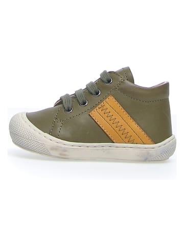 "Naturino Leder-Sneakers ""Tail"" in Khaki"